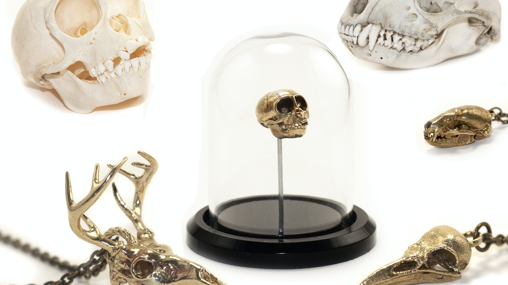 Skulptures: Miniature Metal Cast Animal Skulls from CT Scans project video thumbnail