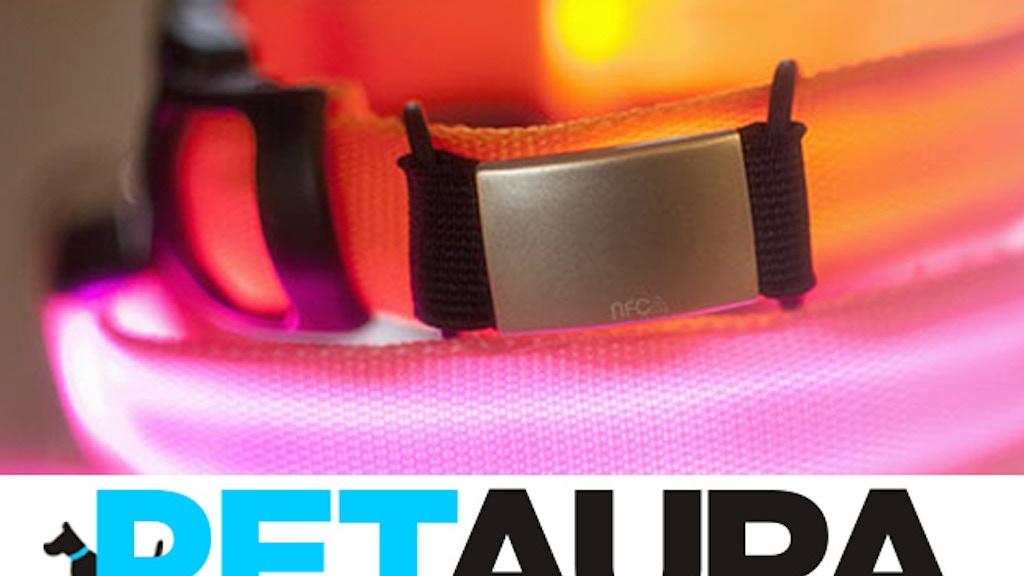 PetAura: The Ultimate Smart Pet Collar project video thumbnail