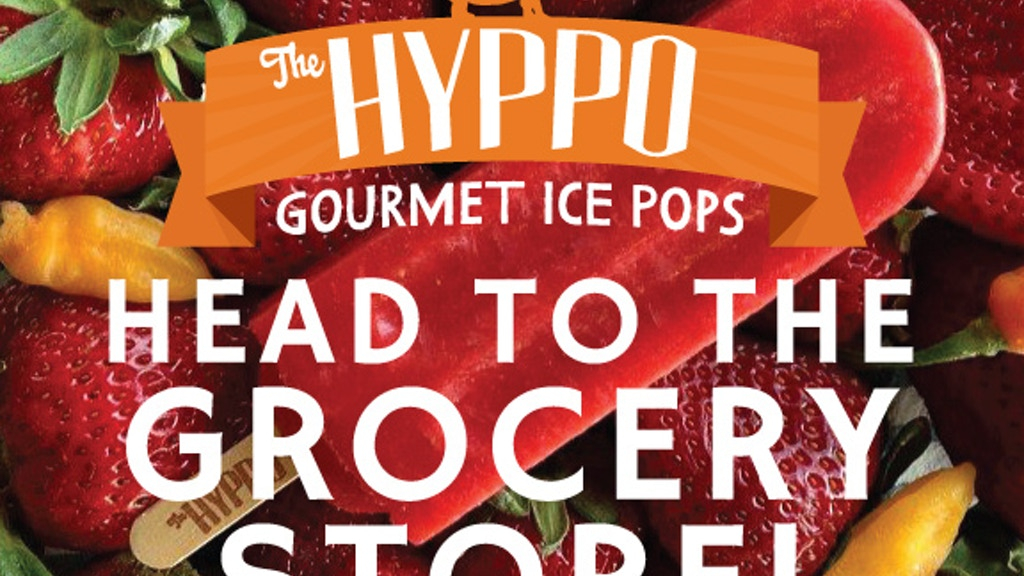 THE HYPPO GOURMET ICE POPS head to the grocery store! project video thumbnail