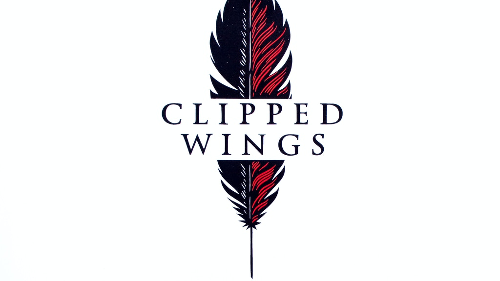 Clipped Wings Playing Card Deck - USPCC Printed project video thumbnail