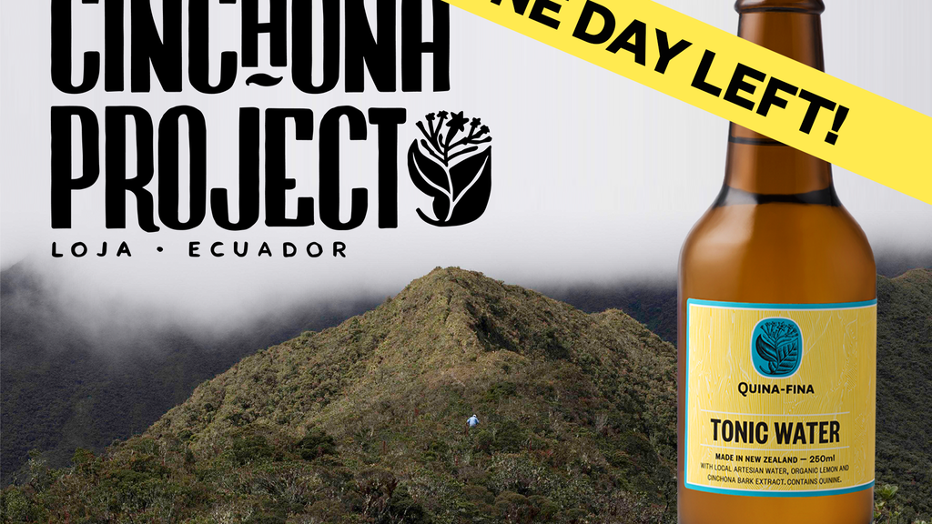 THE CINCHONA PROJECT: A Better Gin & Tonic project video thumbnail