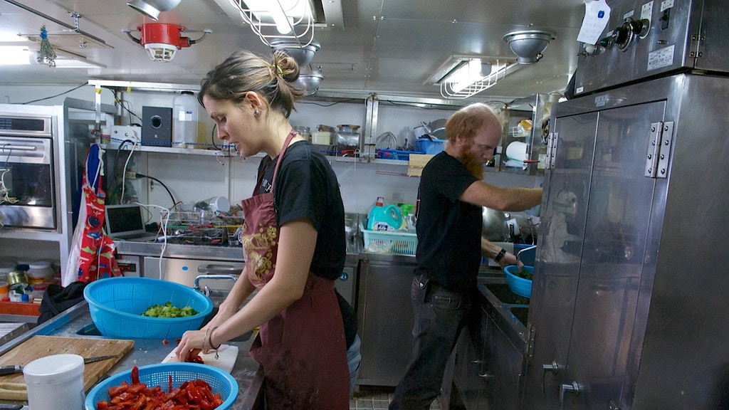 Think! Eat! Act! A Sea Shepherd Chef's Vegan Cookbook project video thumbnail