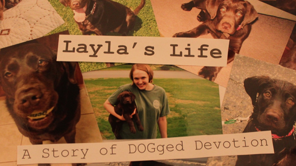 Layla's Life: A Story of DOGged Devotion project video thumbnail