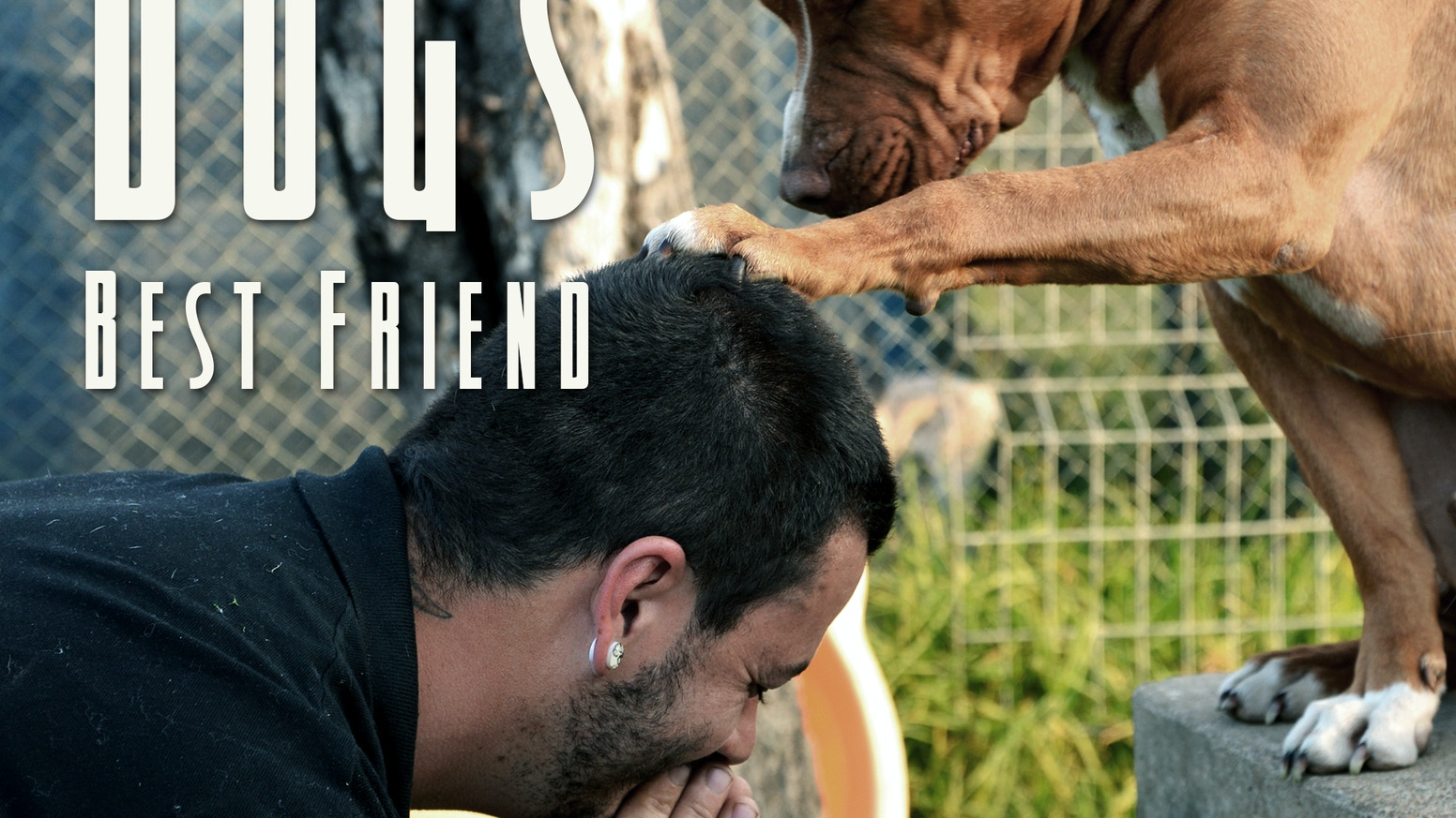 A documentary film that follows the journey of one man and his life's work, to rehabilitate man's best friend, one dog at a time.