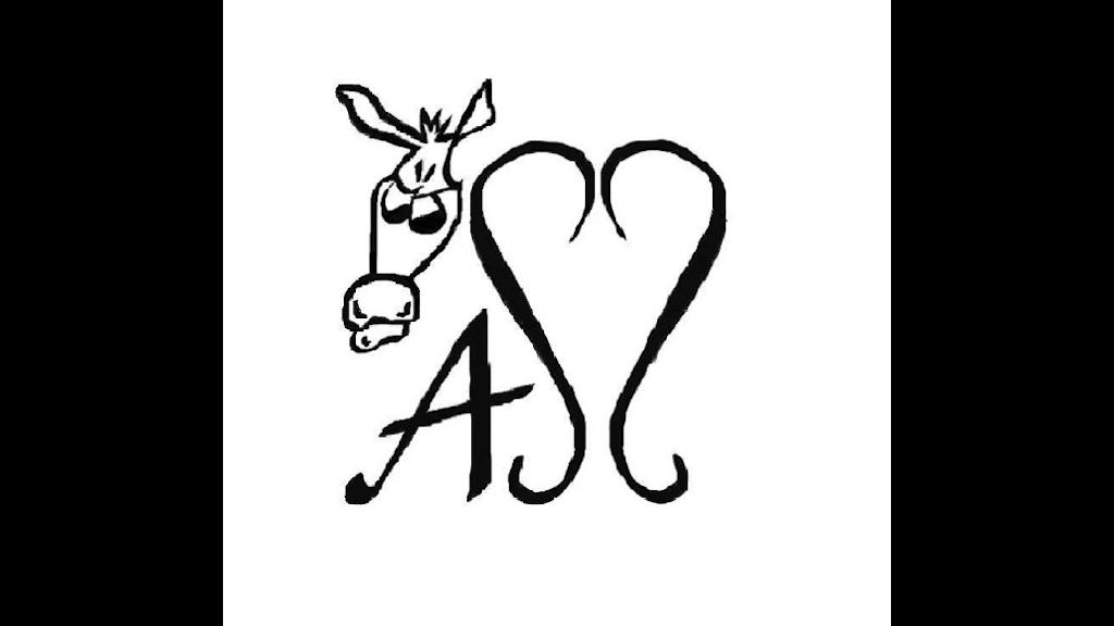 AssesShoes.com by Abby Garfinkel —Kickstarter