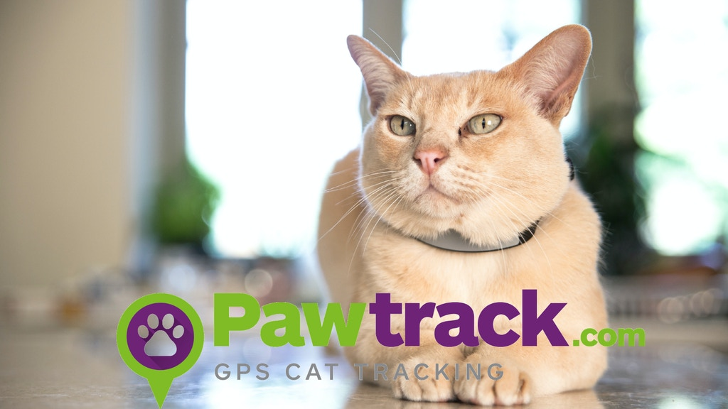 Pawtrack GPS Cat Tracking Collar project video thumbnail
