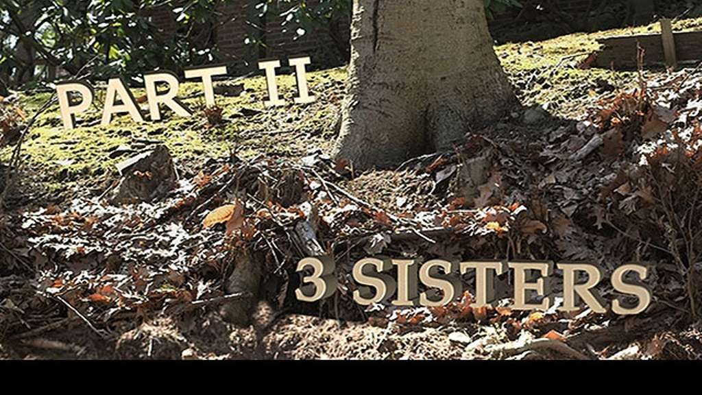 3 SISTERS Series PART II: SustainABLE at Elsewhere AiR '14 project video thumbnail