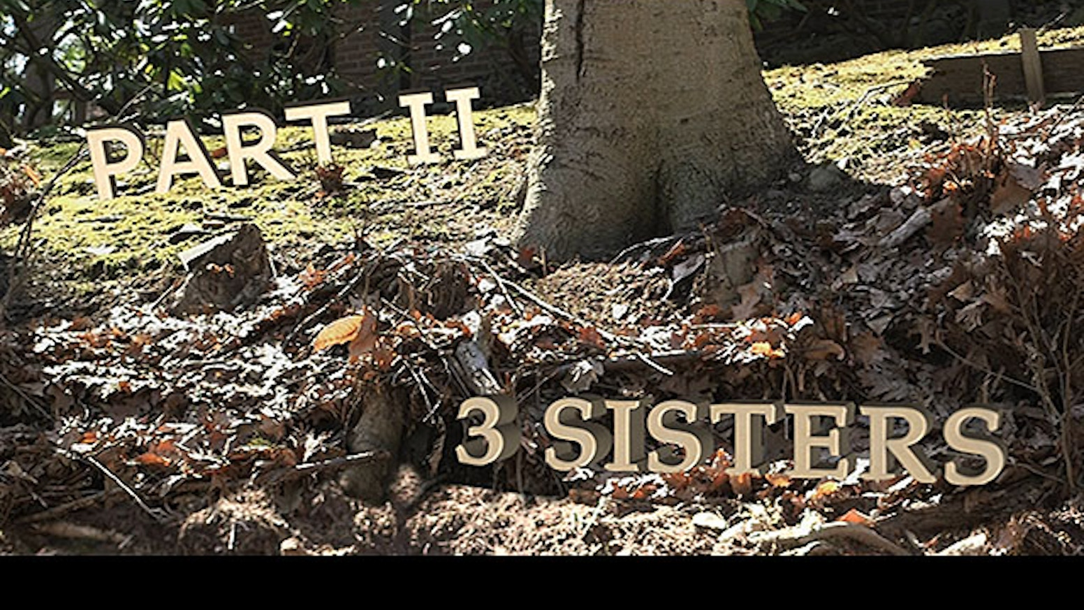 Help make possible Part II of my 3 SISTERS Series: SustainABLE at Elsewhere Living Museum