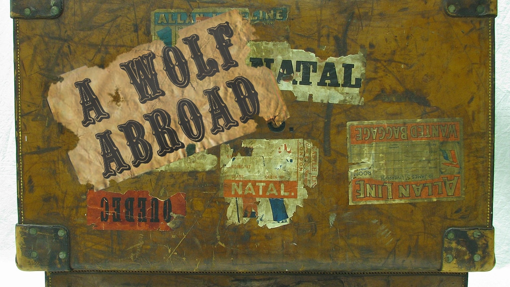 Project image for A Wolf Abroad - A Virtual Travel Show Experience