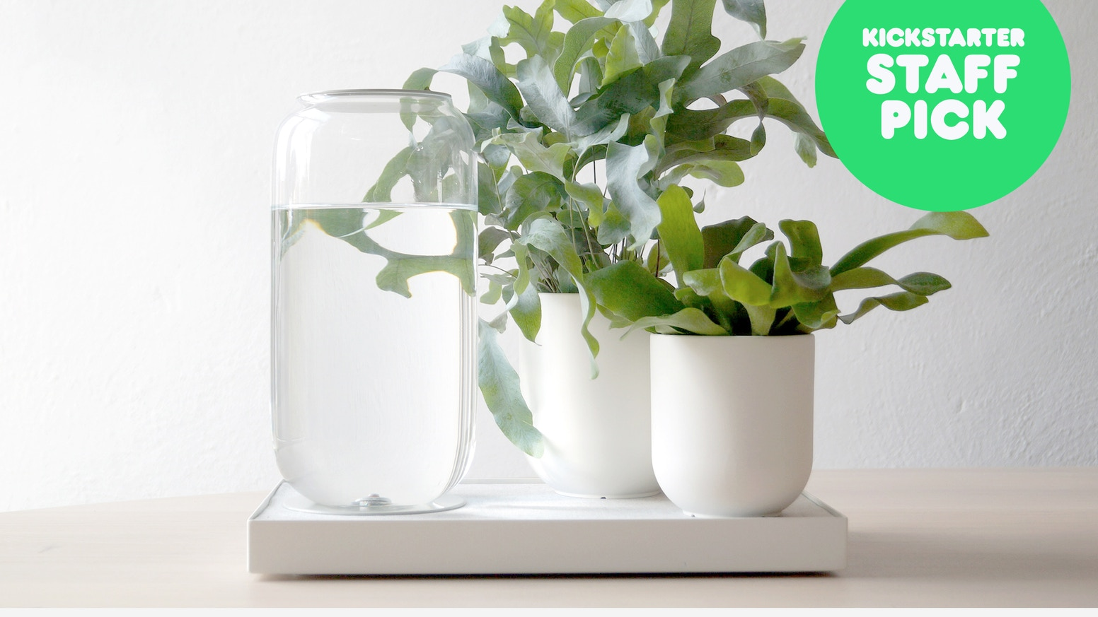 Tableau : Automatic House Plant Watering Tray by Pikaplant