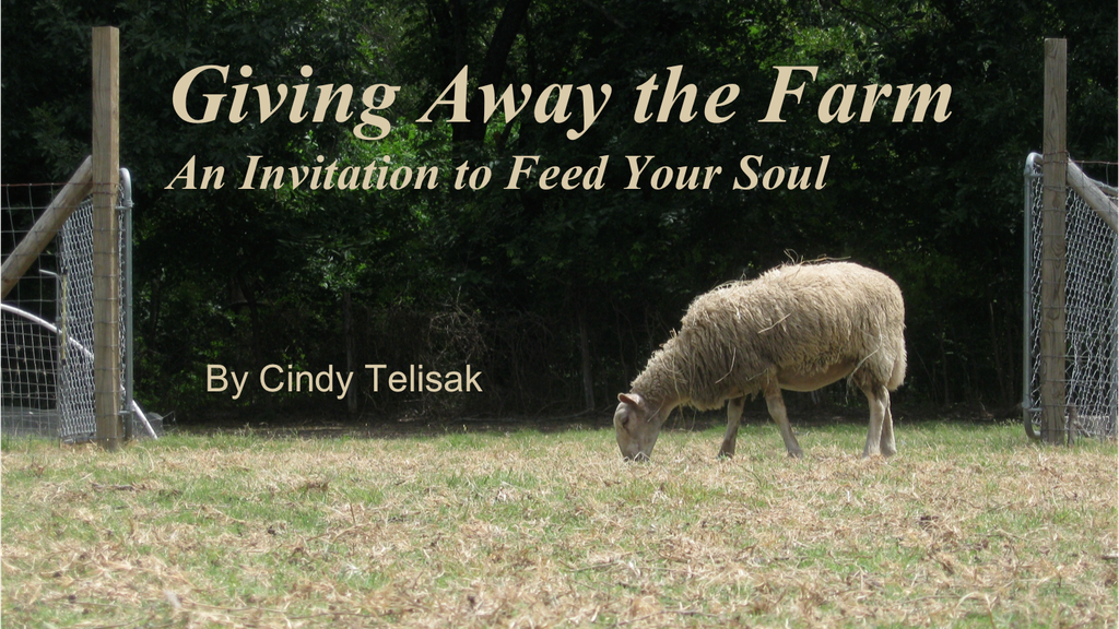 Giving Away the Farm: An Invitation to Feed Your Soul project video thumbnail