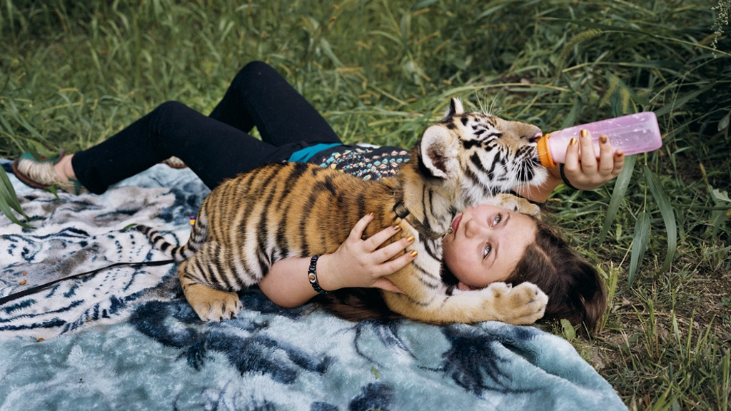 Amelia and the Animals: Photographs by Robin Schwartz project video thumbnail
