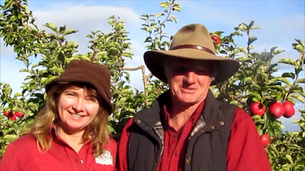 THE FORGOTTEN APPLE - Free Settlers Historical Plant Nursery project video thumbnail