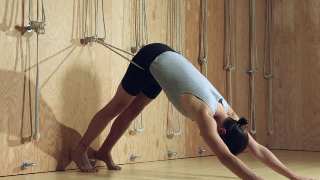 Iyengar Rope Wall for shambhala yoga & dance center by shambhala