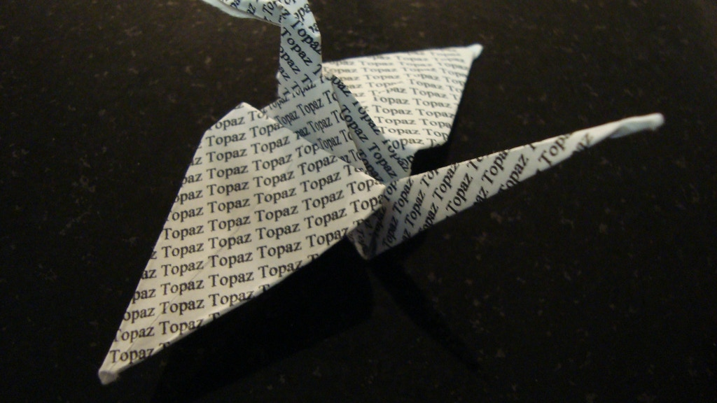 Topaz Blue Crane project video thumbnail