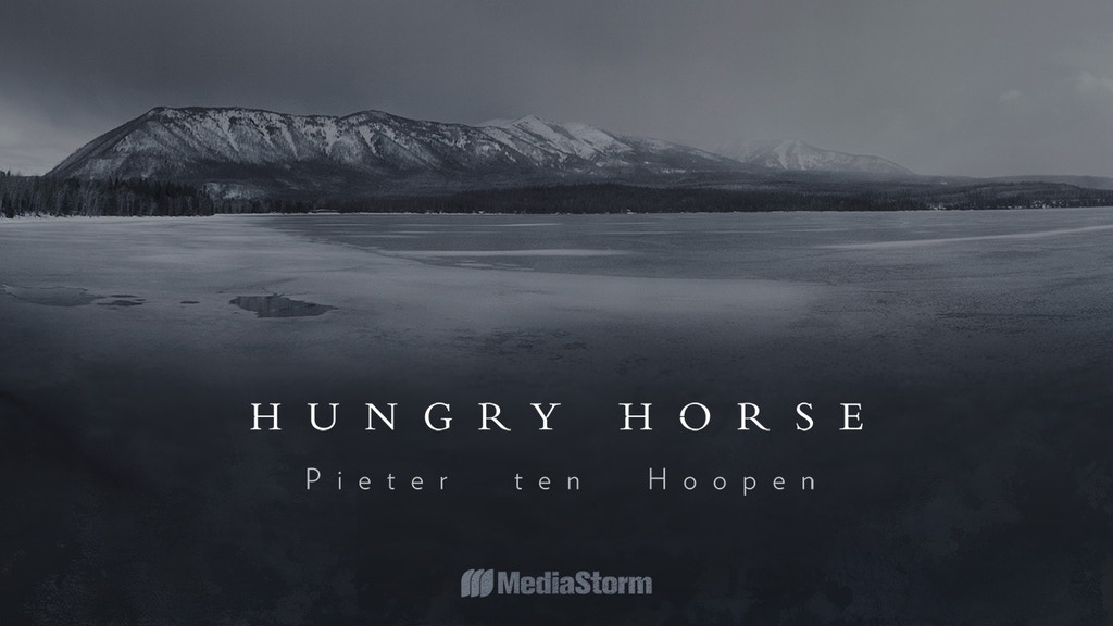 Hungry Horse by Pieter ten Hoopen project video thumbnail