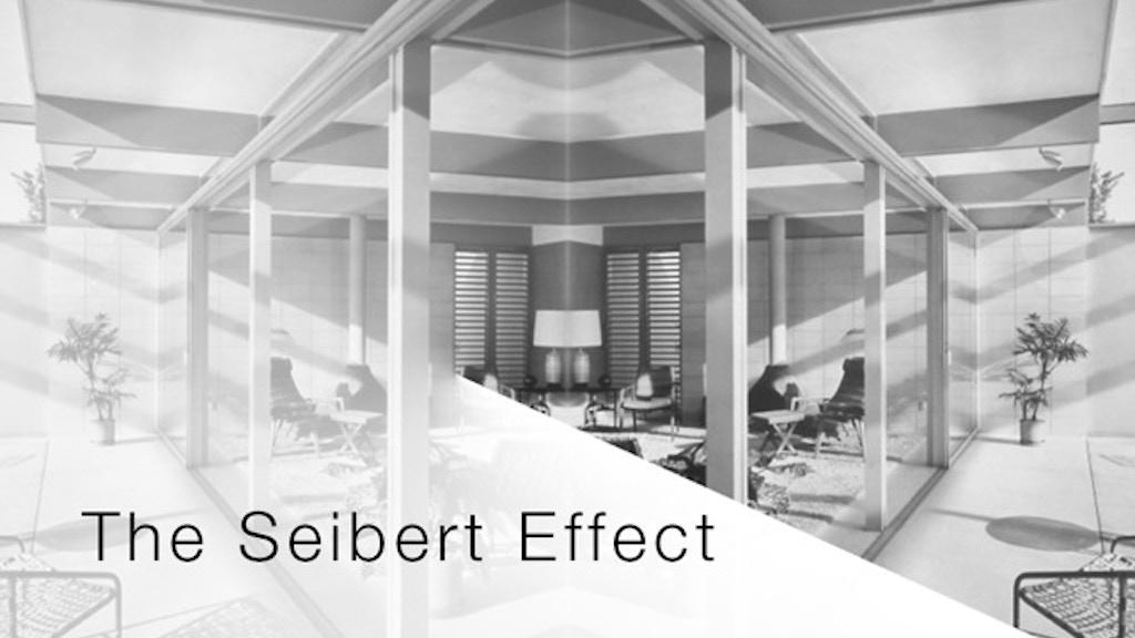 The Seibert Effect project video thumbnail