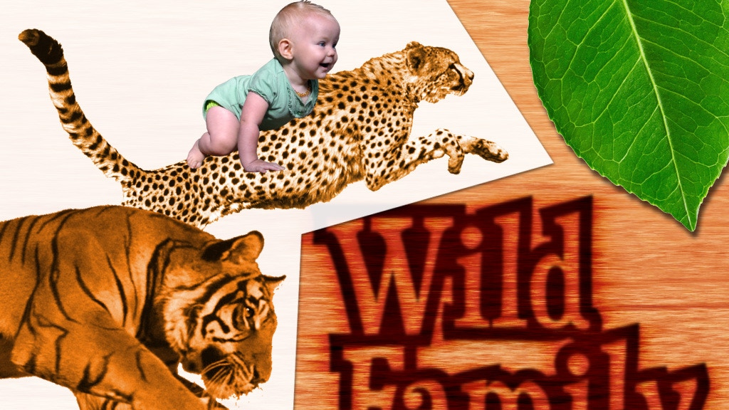 Wild Family—Connecting to Your Calling in Your Family Life. project video thumbnail