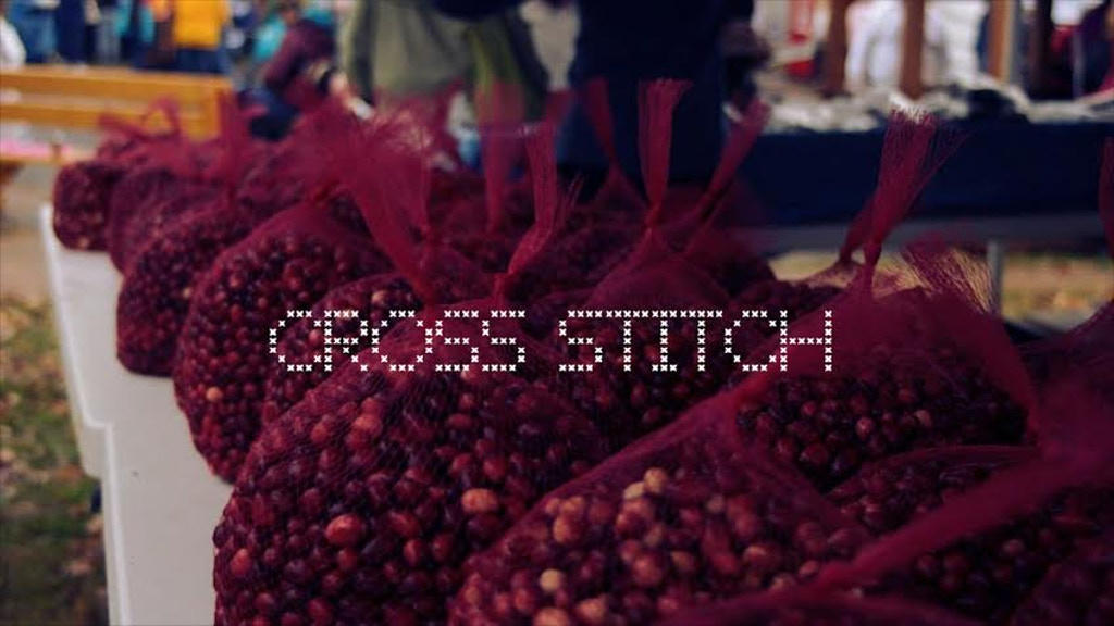 Cross Stitch (a short film) project video thumbnail