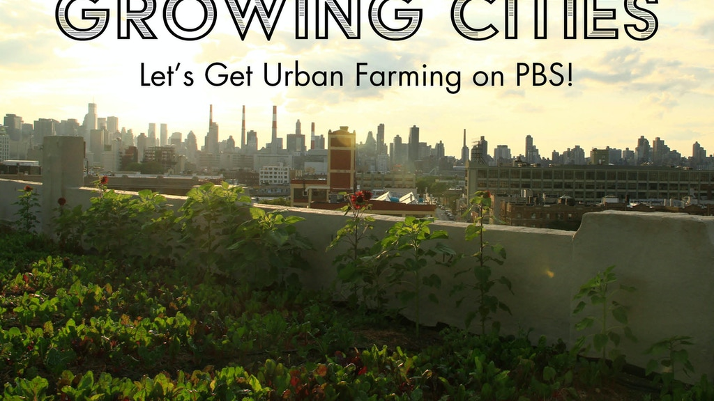 Growing Cities: Let's Get Urban Farming on PBS project video thumbnail