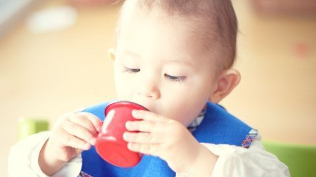 The Little Globetrotter: A Practical & Stylish Eating Bib project video thumbnail