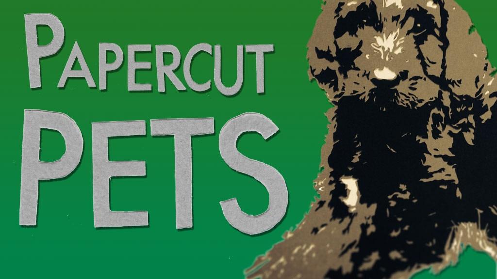 Papercut Pets project video thumbnail