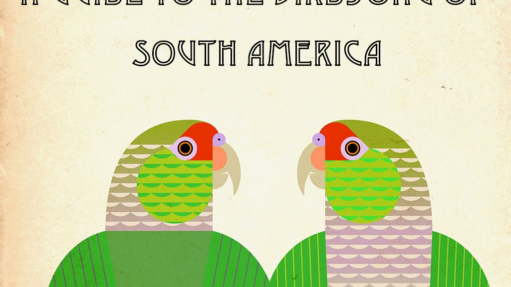 A Guide to the Birdsong of South America project video thumbnail