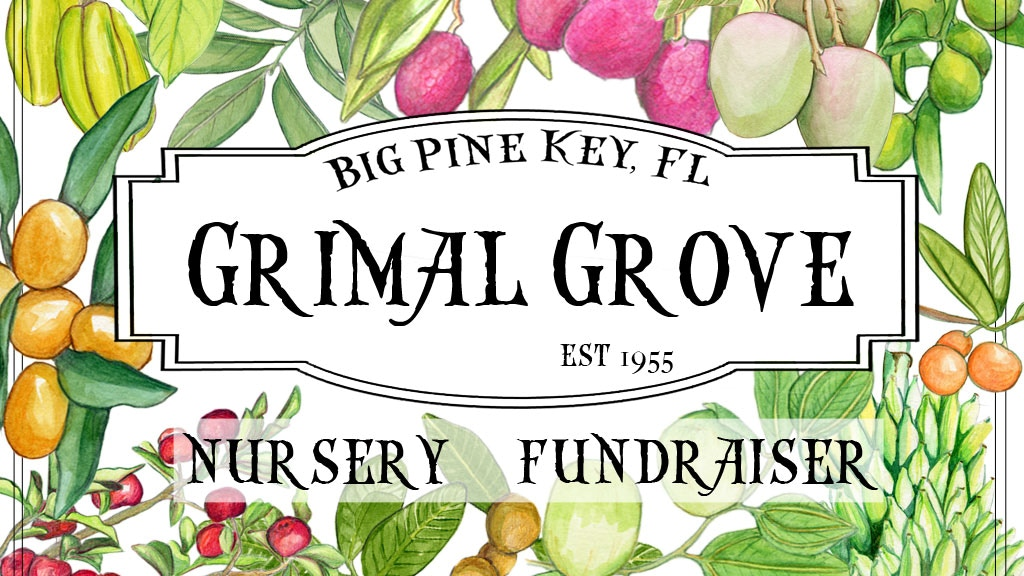 Grimal Grove Nursery Fundraiser! project video thumbnail
