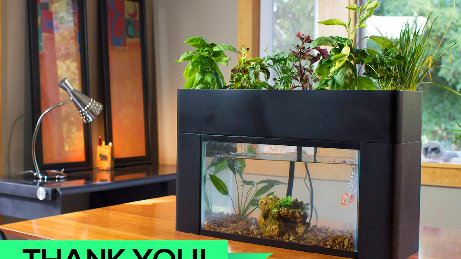 Grow discover aquasprouts aquarium aquaponic garden by for Hydroponics fish tank