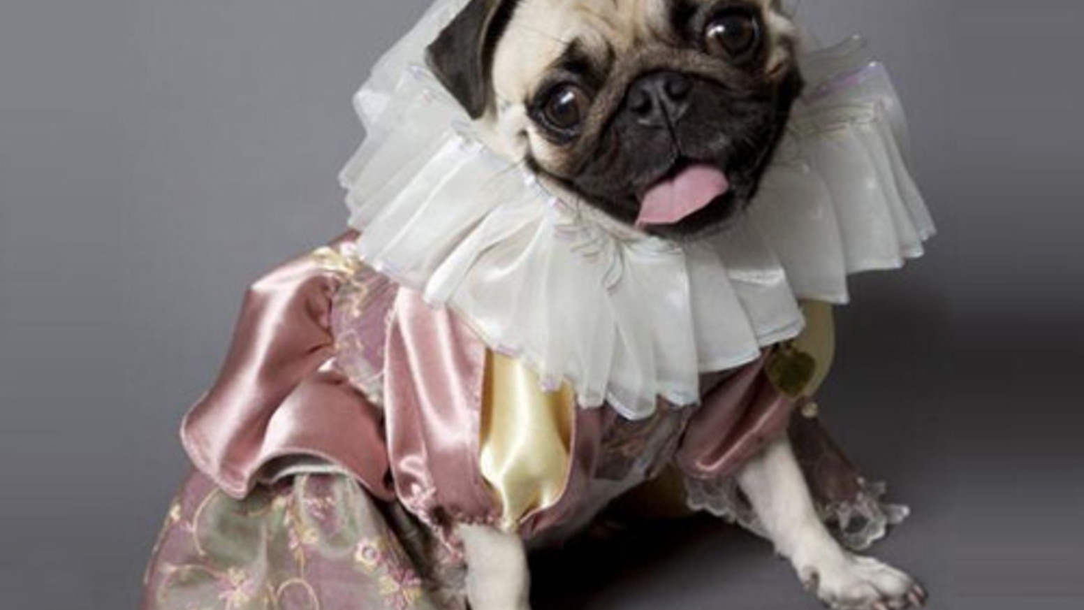 "I want to produce the first-ever all-pug production of ""Hamlet.""  As you can imagine, this will require finding very talented pugs."