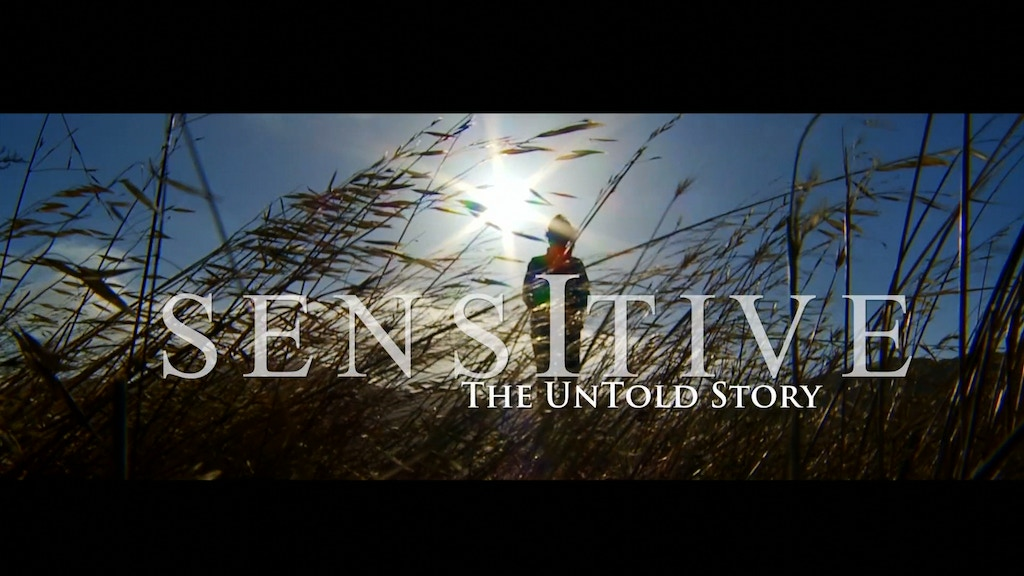 Sensitive - The Untold Story project video thumbnail