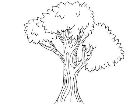 I Want To Draw A Tree by Daniel Carpenter —Kickstarter