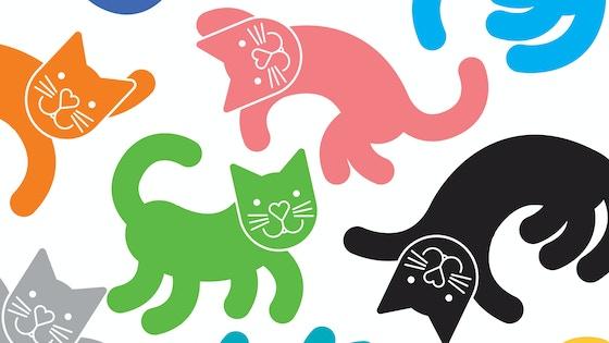 Catstarter project video thumbnail