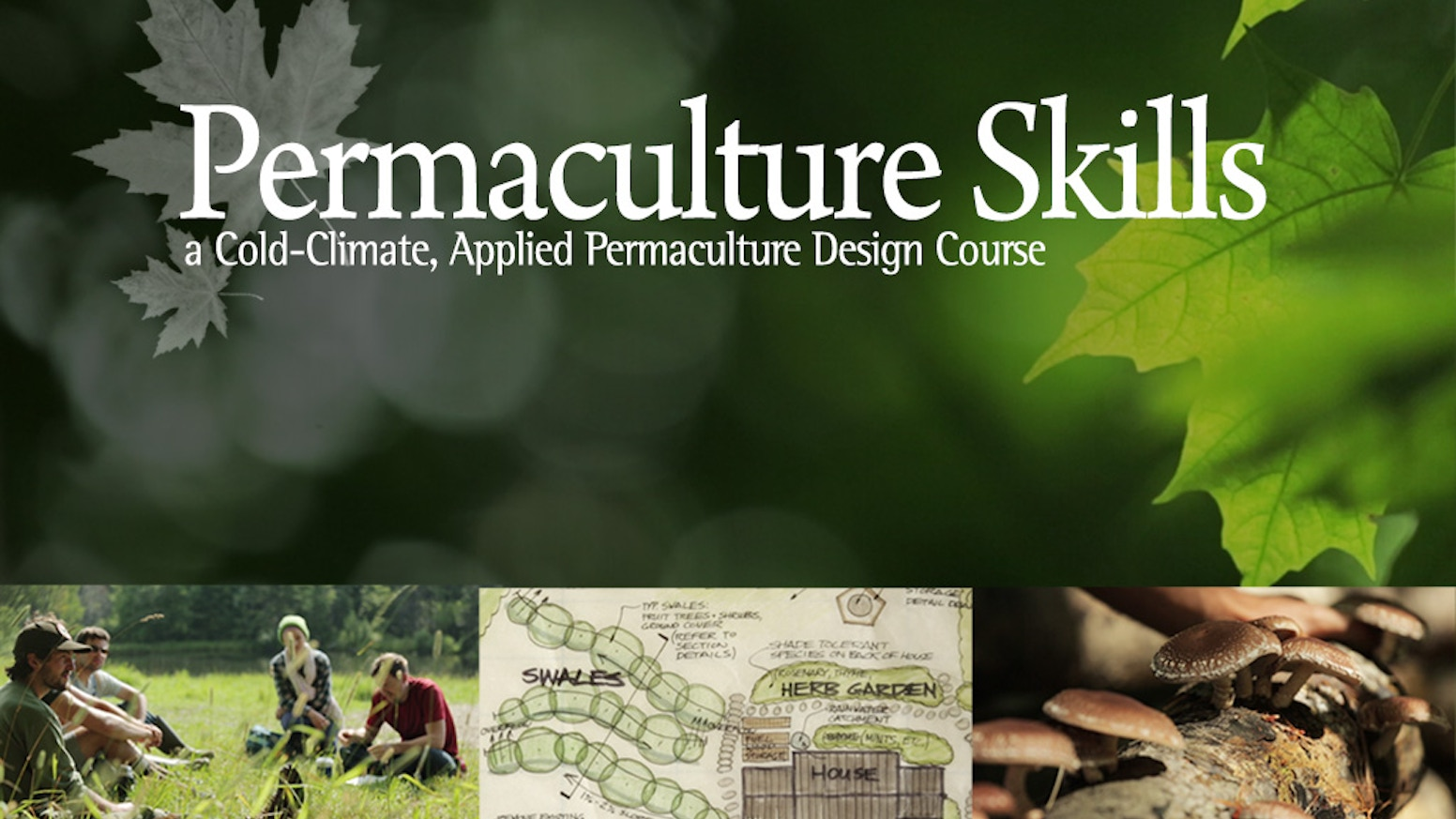 A film series distilled from 20 days of cold-climate Permaculture Design Courses in the Vermont Hills.