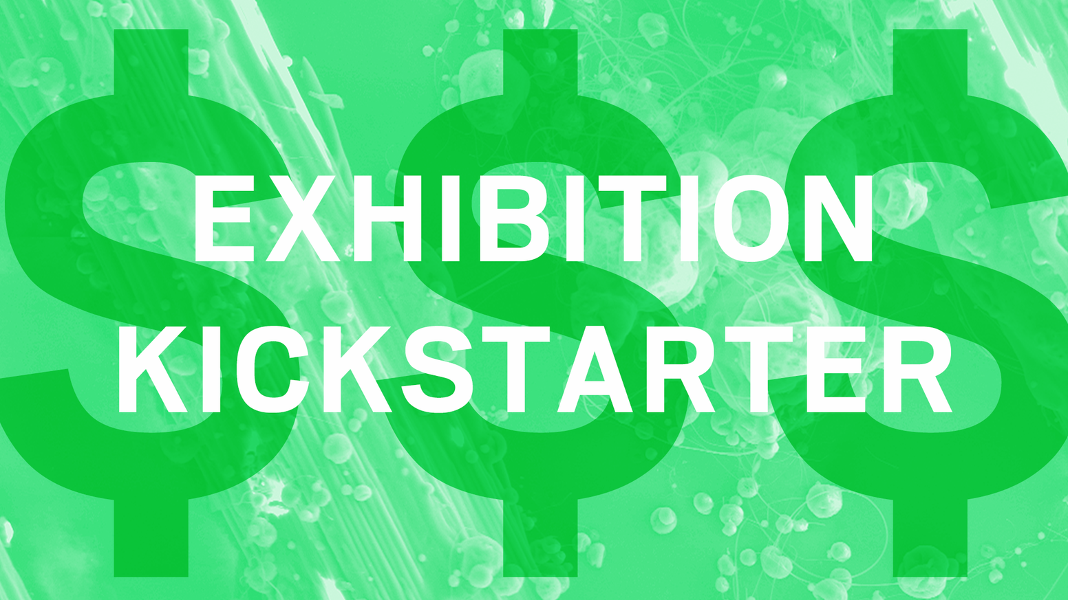 This is not a Kickstarter. This is an exhibition. A limited edition custom collection of art objects created online.