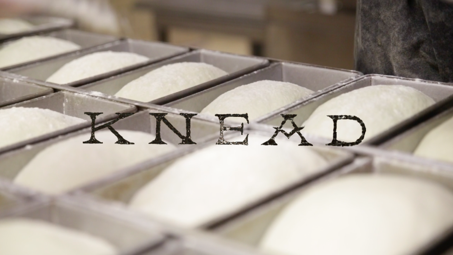 After 3 seasons of perfecting our loaves & selling at farmers markets in St. Louis, KNEAD is ready to open a legit sourdough bakery.