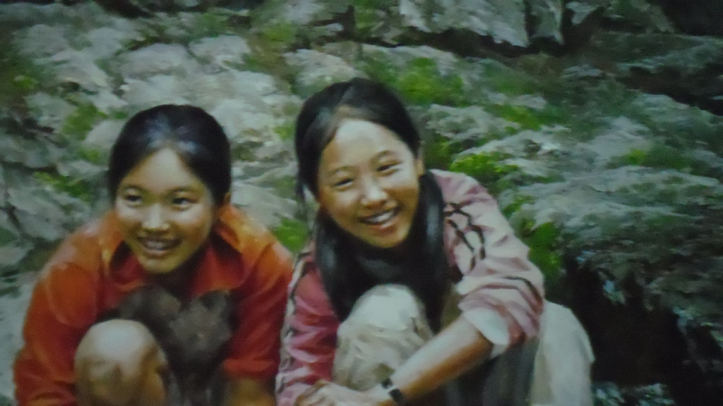 Project image for Fine Art of DPR Korea