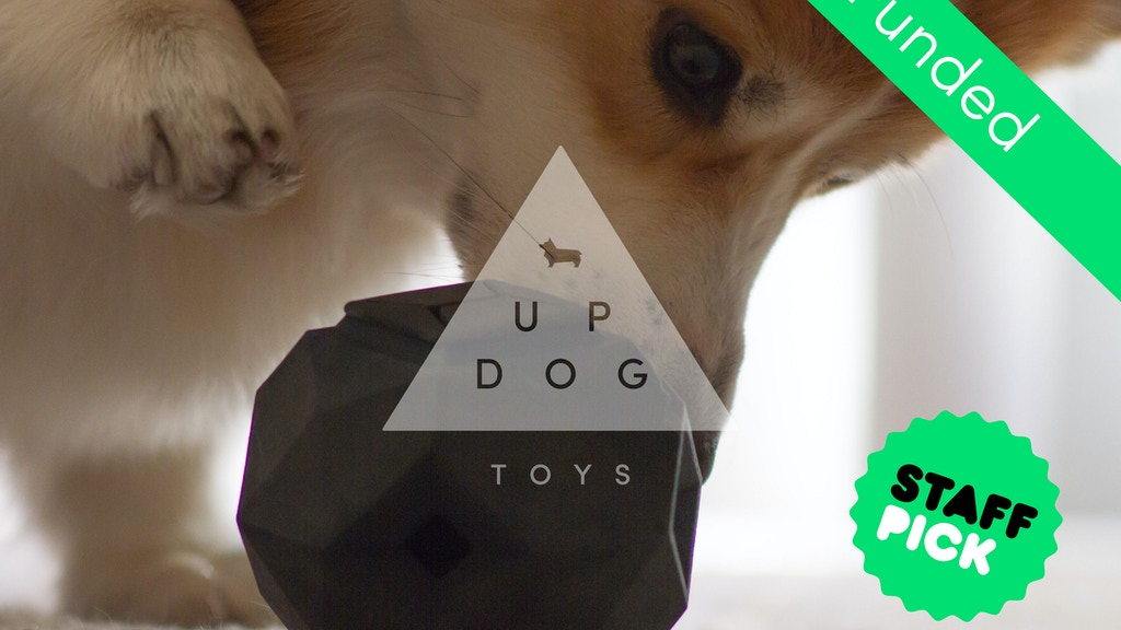 The Odin: A Puzzle Dog Toy with a Modern Modular Design project video thumbnail