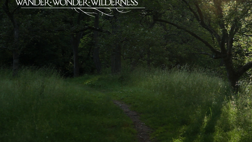 Wander, Wonder, Wilderness project video thumbnail