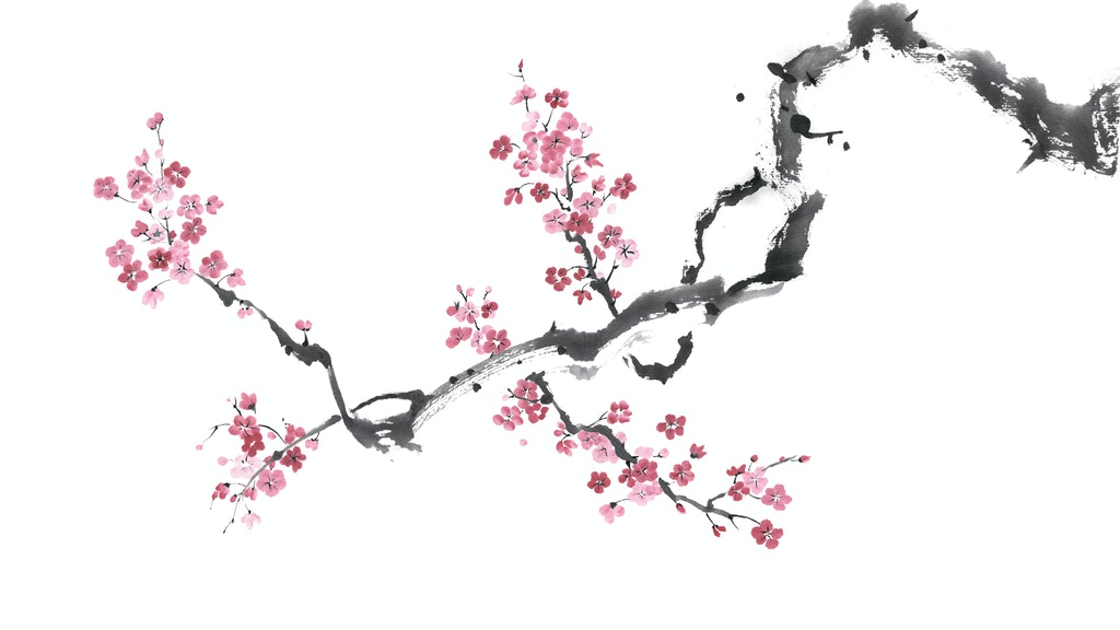 The Zen Habits Book project video thumbnail