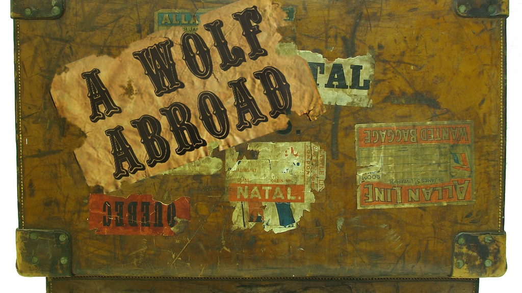 Project image for A Wolf Abroad - A Virtual Reality Travel Show