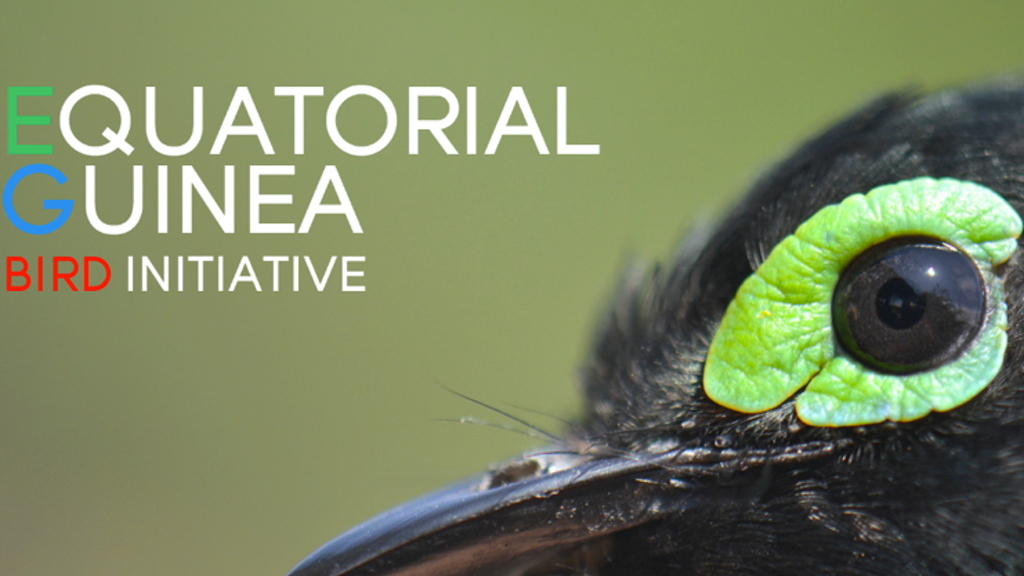 Equatorial Guinea Bird Initiative: Science in Africa! project video thumbnail