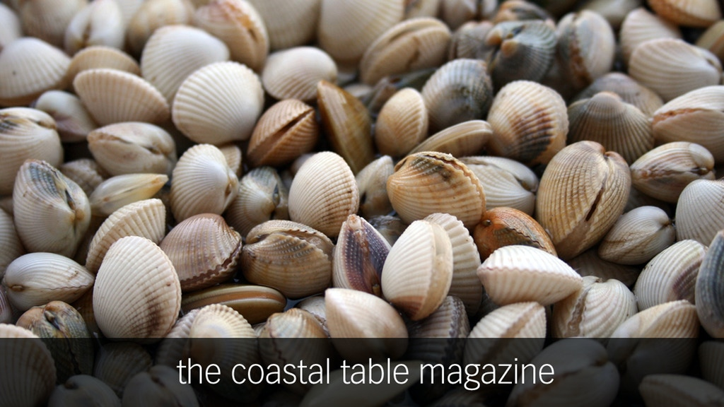 The Coastal Table | an anthology of seaside living project video thumbnail