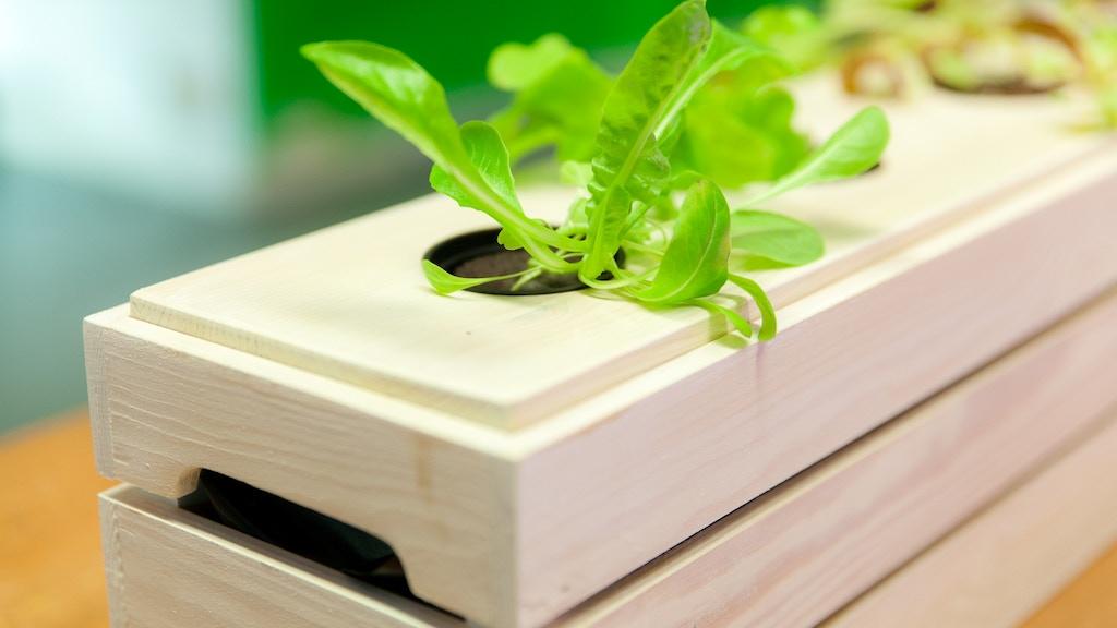 Scandinavian Design Grow Box project video thumbnail