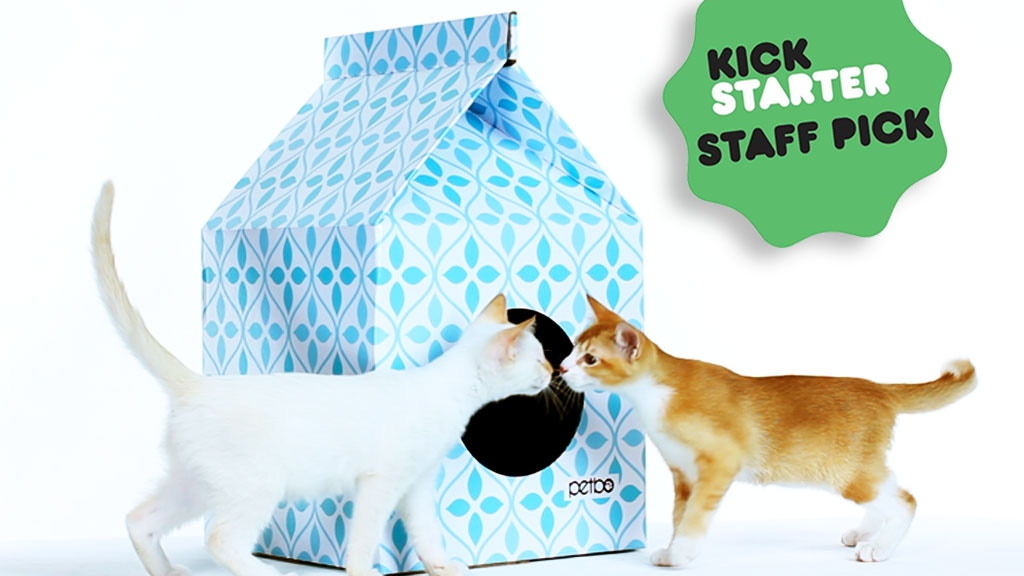 Cat Playhouses project video thumbnail