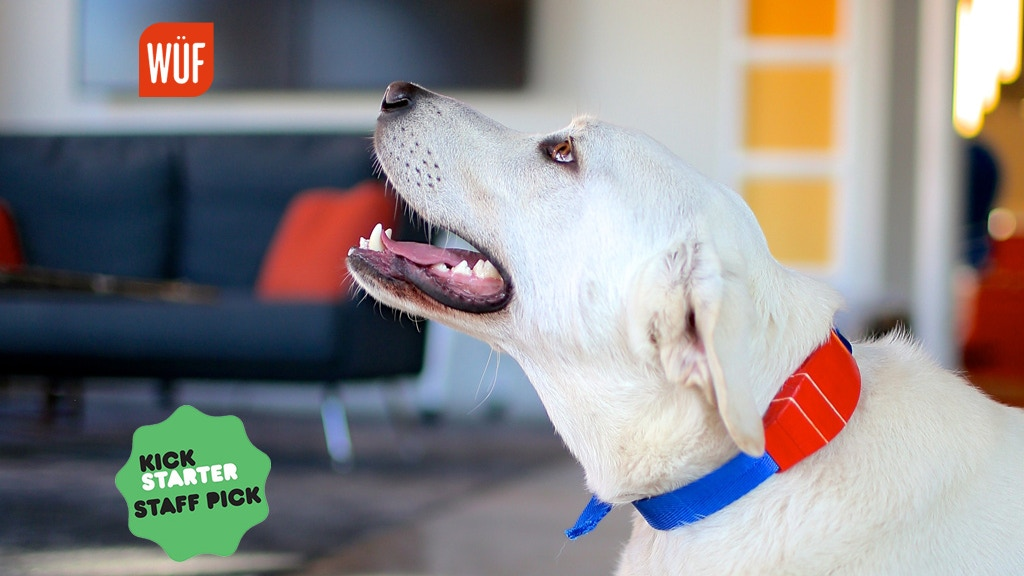 Meet WÜF, The World's Smartest Dog Collar project video thumbnail