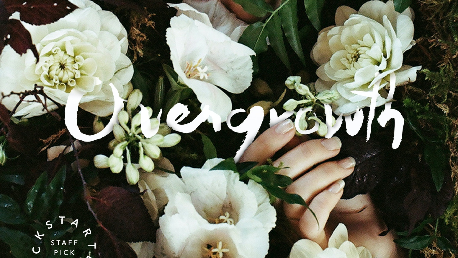 OVERGROWTH is an artistic collaboration and earnest search for beauty expressed through humans and nature.