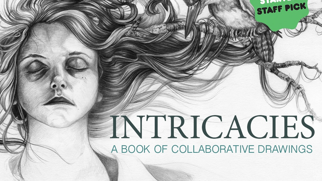 INTRICACIES Book of Collaborative Illustrations project video thumbnail