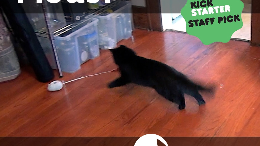Mousr: The robotic mouse that plays with your cat project video thumbnail