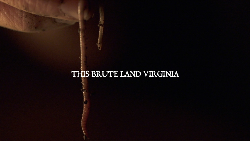 This Brute Land Virginia - Short Film project video thumbnail
